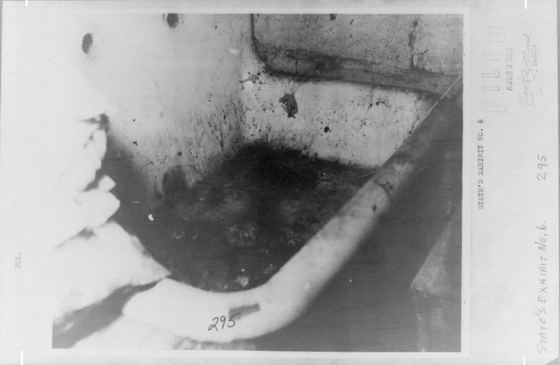 bathtub sylvia likens